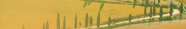 maison etude.jpg.crop_display